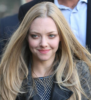 Amanda Seyfried Calls For Tighter Airport Security