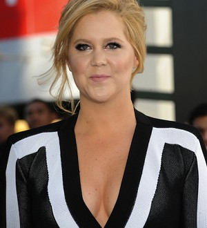 Amy Schumer to Seal Her Big-Screen Cred with Upcoming Paul Feig Action-Comedy!