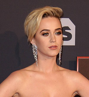 Katy Perry: 'I've done more than just Kissed A Girl'
