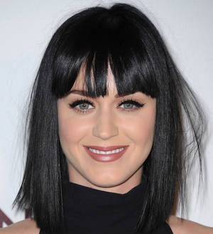 Katy Perry's 'left shark' inspires fundraising campaign