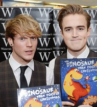 McFly rockers win first book award