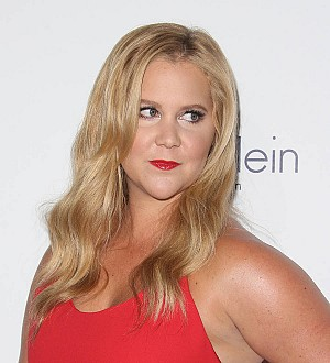 Amy Schumer goes sans pants for gun safety