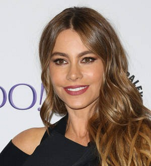 Sofia Vergara's lawyer blasts ex-fiance's 'uncredible' allegations
