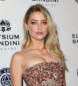 Amber Heard keeps smuggled pet pooches in Johnny Depp divorce