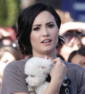 Demi Lovato axes TV appearance as she mourns dog's death