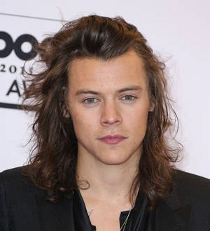 Harry Styles baffled by sheep placenta facial rumors