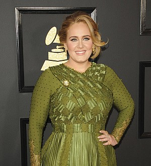Adele scraps concert fireworks after son's eye injury