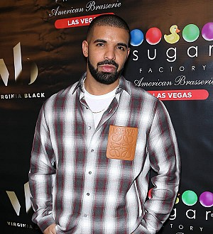 Drake's uninvited guest arrested