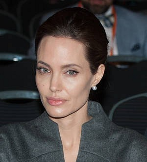 Angelina Jolie 'open' to career in politics