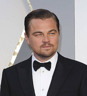 Leonardo DiCaprio 'to produce seafaring action thriller' for Netflix