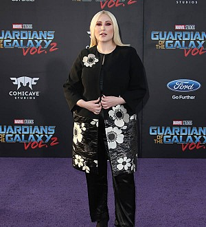 Hayley Hasselhoff pleads no contest to driving under the influence - report