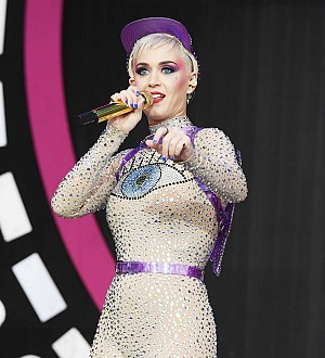 Katy Perry 'wasn't in the mood' for naked paddleboarding