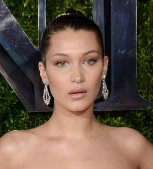 Bella Hadid hospitalized with mystery illness