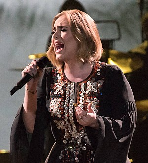 Adele hired doctor to protect herself from sick crew members