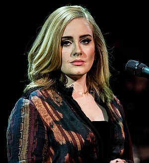 Adele ruled the Internet in 2015