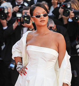 Rihanna trespasser released after a day in jail