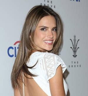 Alessandra Ambrosio to romance Will Arnett in Turtles sequel