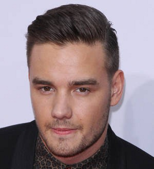 Liam Payne urges One Direction fans to 'chill out' after Zayn Malik photo joke