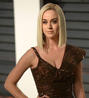 Katy Perry Searches For 'Hot' Pictures Of Herself Online