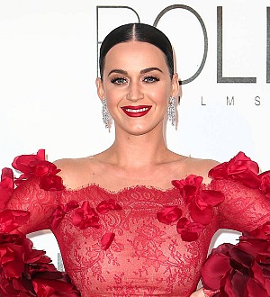 Orlando Bloom helped Katy Perry with DNC speech