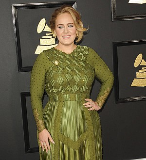 Adele halts concert after fan collapses