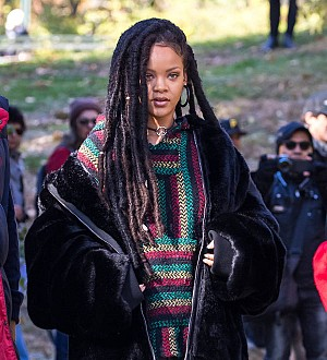 Rihanna not starring in Annette